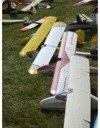 Scale Gliders